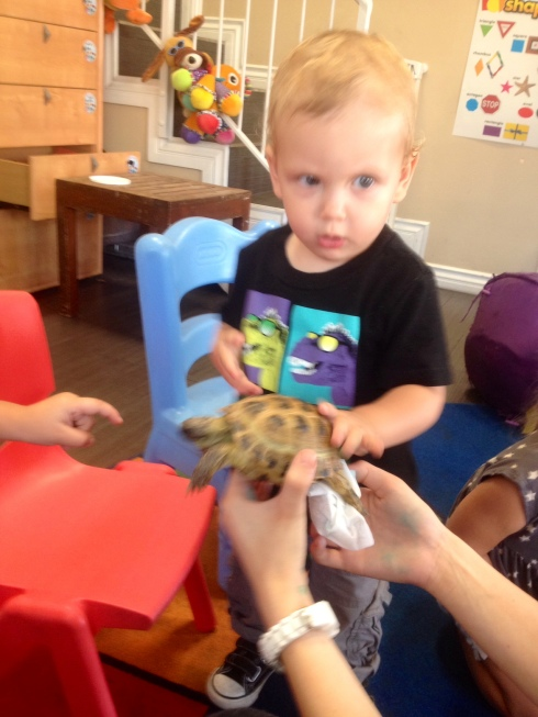 "Of course, this picture is fuzzy because I didn't take it. Daycare took it and sent me my son's first real life encounter with his beloved ""Turler""."